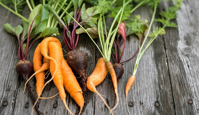 A pile of ugly fruit and veg