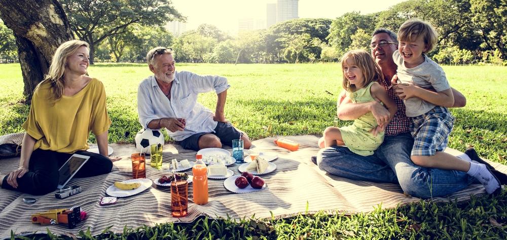 V8 family picnic in park